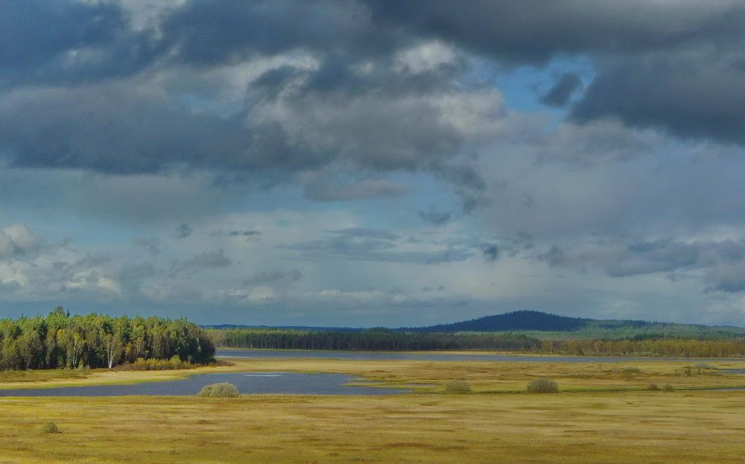 Op ontdekking in het land van sprookjes en vikingen
